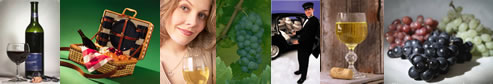 Long Island Winery Tours - NYS Wine Tours - specializing in limousine services for wine tasting in the Long Island, New York area.  Tours featuring professional chauffeurs, luxury sedans, stretch limousines, vans, more.